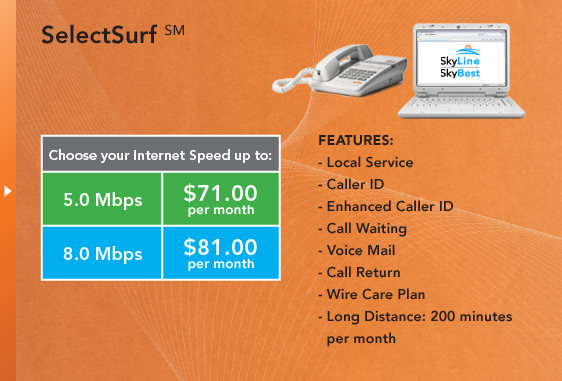 SelectSurf(SM) - Local Service, Caller ID, Enhanced Caller ID, Call Waiting, Voice Mail, Call Return, Wire Care Plan, Long Distance: 200 minutes per month.